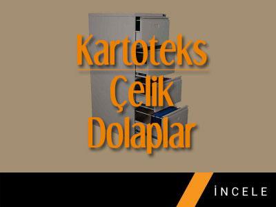 Kartoteks-Celik1